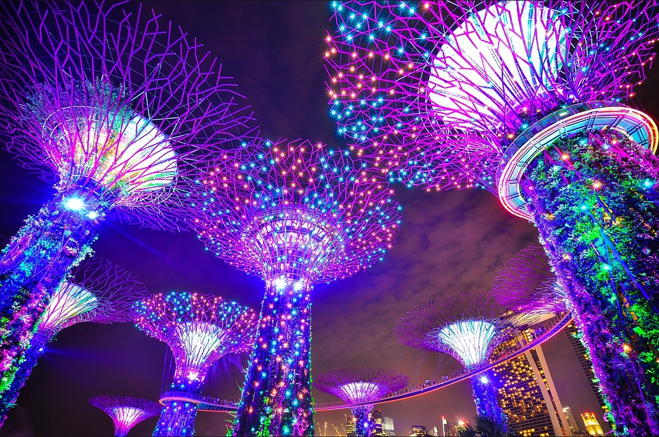 Best Sim Card for Singapore - Budget travel in Singapore - gardens by the bay